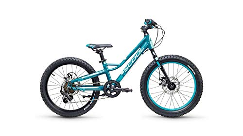 S'Cool faXe Race 20R 7-S Kinder Fahrrad (26cm, DarkGreen/Aqua matt)