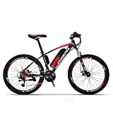 Adulti elettrica Mountain Bike, Biciclette da Neve 250W, Rimovibile...
