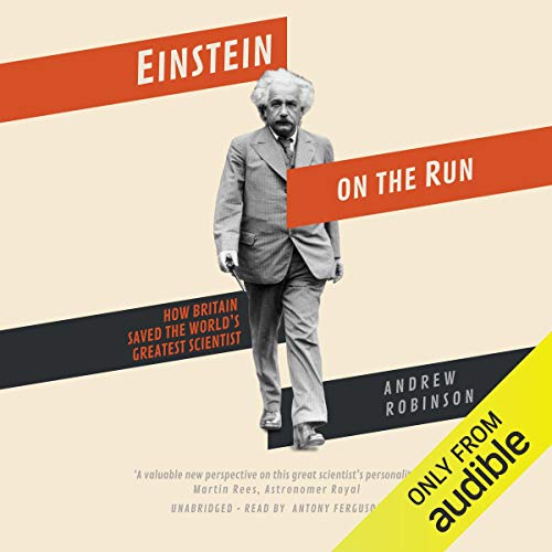 Einstein on the Run cover art