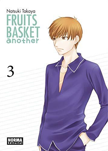Fruits Basket Another 3
