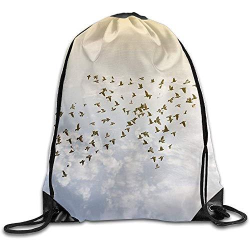 RJ Unique Drawstring Bag,Menge Von Den Vögeln, Die Auf Himmel-Wachstums-Entwicklungs-Erfolgs-Geschäfts-Konzept-Natur Art Abstract Drawstring Bags Fliegen