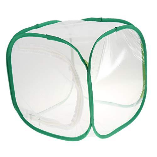 B Blesiya Nido Terrario Jaula de Cría Insecto Plegable Accesorios Casa de Mascota Conveniente Cómodo - 30x30x30cm