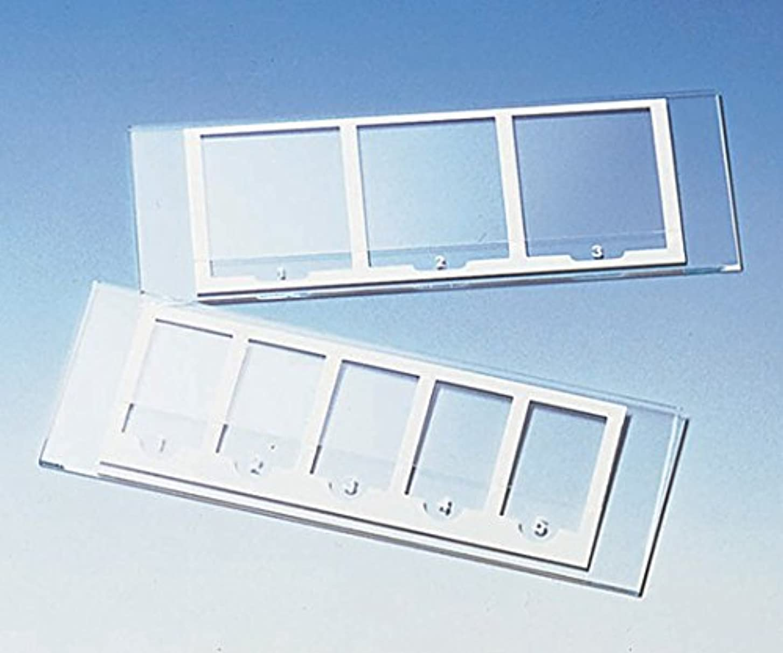 ブレースセミナー列挙する検鏡プレート UR-137S (3窓)(50枚)