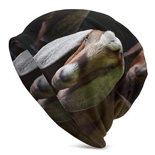 Cappello da Berretto con Animali da Capra Turbante Elastico Leggero e voluminoso per Uomo e Donna, Berretto con Bordo confinato