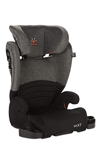 Diono Monterey XT LATCH, 2-in-1 Expandable Booster Seat, Heather (Discontinued)