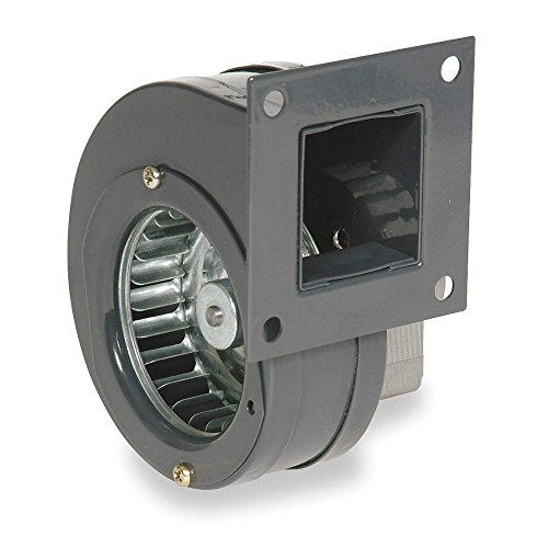 120 volt squirrel fan - 2