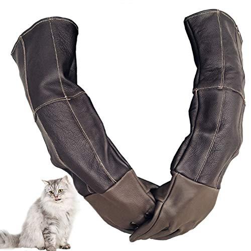 Handschuhe für Haustiere Anti-Biss-Schutzhandschuhe für Catch Dog, Katze, Reptil, Tier Ultralanges Leder Sicherheitshandschuhe (Color : Brown, Size : XL)