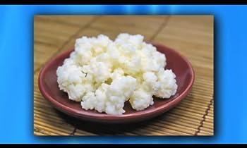 Kefir Grains - Living Probiotic Enriched  As seen on TV