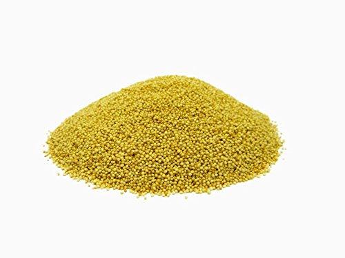 Graines d'amarante/rajagro - 1,5 kg