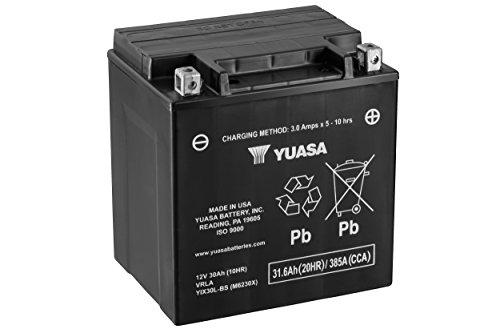 Yuasa YUAM6230X YIX30L-BS Battery