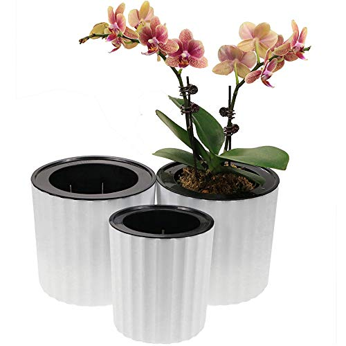 MUZHI Orchid Pot with Net and Holes, Round Self Watering Planter Pot for Indoor Plants and Flowers 3 Sets White