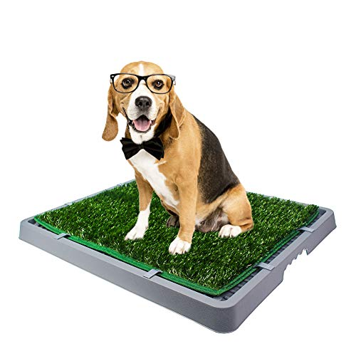 HAVETOLOVE Dog Grass Pad with Tray Dog Potty Training Grass Pad Artificial Grass for Dogs Pee Portable Potty Trainer with Tray Two Replacement Grass Mats Ideal for Small and Medium Dogs