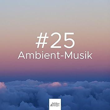 #25 Ambient-Musik: Naturgeräusche, tiefe Entspannung für Meditation und Yoga