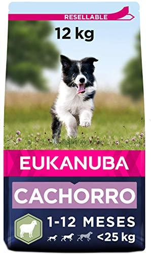 EUKANUBA Alimento seco para Cachorros de Razas pequeñas y Medianas, Rico en Cordero y arroz, 12 kg
