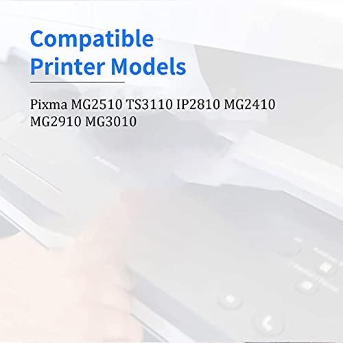 RICR 145 146 XL Reemplazo de Cartucho de Tinta Compatible para Canon PG-145XL CL-146XL, para Usar con MG2510 TS3110 IP2810 MG2410 MG2910 MG3010 Impresoras (Paquete de 2)