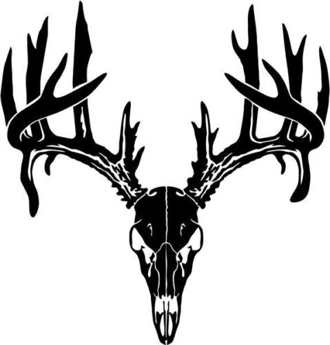 Deer Buck Skull Antlers Hunter Hunting Sportsman Car Truck Windows Decal Sticker - Die cut vinyl decal for windows, cars, trucks, tool boxes, laptops, MacBook - virtually any hard, smooth surface