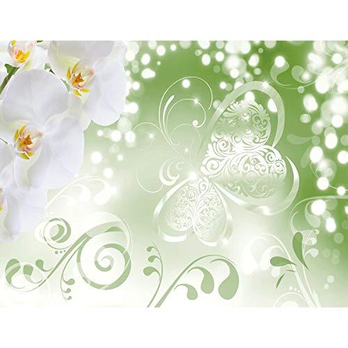 Fototapeten Blumen Orchidee Grün 352 x 250 cm Vlies Wand Tapete Wohnzimmer Schlafzimmer Büro Flur Dekoration Wandbilder XXL Moderne Wanddeko Flower 100% MADE IN GERMANY - Runa Tapeten 9076011c