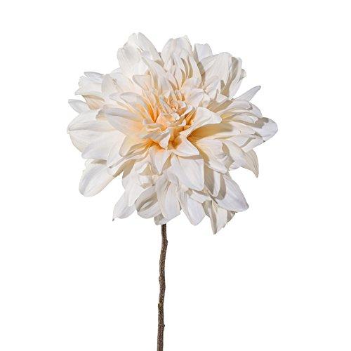 creativ home Kunstblume DAHLIE, 57 cm. Dahlientrieb mit Einer Blüte in Creme. 2017803-48