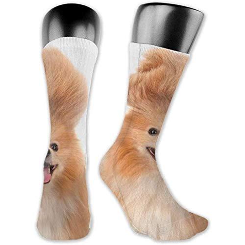 Socken Sind Bequem, Männer 'Spomeranian Dog Crazy Troll Hair Smiling Medium Und Lange Socken
