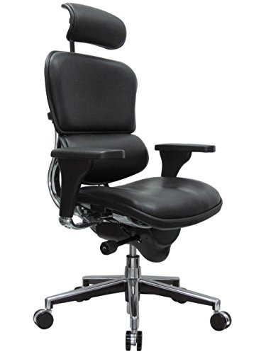 Eurotech Seating Ergohuman High Back Leather Swivel Chair, Black