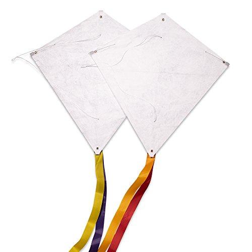 CIM Drachen-Bausätze - [ 2 Stück ] - DIY EDDY 44 DUO - Komplettsets zum selber basteln - Jeder Drachen mit 43x43cm Drachensegel, 20m Drachenschnur auf Handgriff und 2x250cm langen Drachenschwänzen