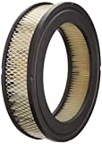 Fleetguard AF484 filtro de aire