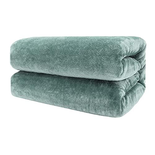 Tienda Excelente Mantas para sofá y Cama de Franela Reversible - Tacto Suave - Material 100% Microfibra - Fácil De Limpiar (Verde, 220 x 240 cm)