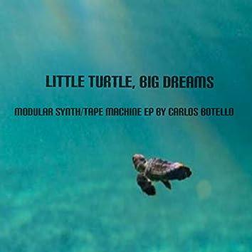 Little Turtle, Big Dreams