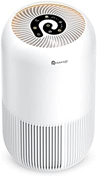 Dreamegg Air Purifier for Home Allergies and Pets Hair