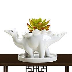 6. Abomet Succulent Pots Succulent Dinosaur Planter
