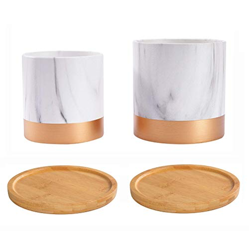 5 Inch and 6 Inch Plant Pot with 2PCS Bamboo Plant Saucer, Marble Ceramic Planter Indoor Flower Containers with Gold Texure for Garden Decor Herb
