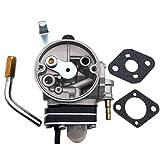 Aokus New Carburetor Carb Compatible for Echo Shindaiwa C350 A021002470 Trimmer