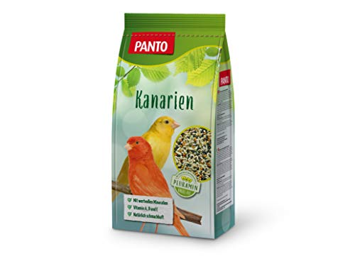 Panto Ziervogelfutter, Kanarienfutter 1 kg, 5er Pack (5 x 1 kg)
