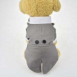 Mignon pour animal domestique Mariage Tuxedo tenues portant pour chien avec nœud papillon vêtement de soirée de fête Veste pour chien Manteau Vêtements Petit Chien Costume pour homme