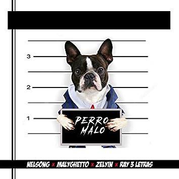 Perro Malo