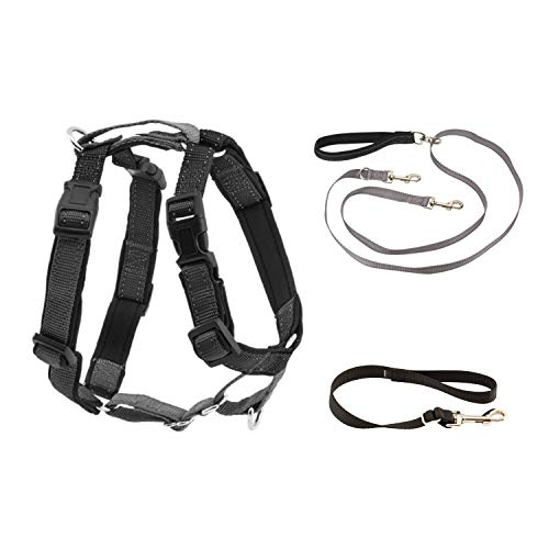 PetSafe 3 in 1 Harness with Two Point Control Leash - No-Pull Harness - Medium - Black - Adjustable