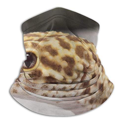 ShiHaiYunBai Tour de Cou Cagoule Microfibre Chapeaux Tube Masque Visage, Fleece Neck Warmer - Leopard Gecko Neck Gaiter Tube, Bandana, Headband & Beanie