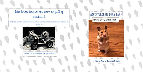Adventures in Luna Land: Advice from a Hamster (English Edition)