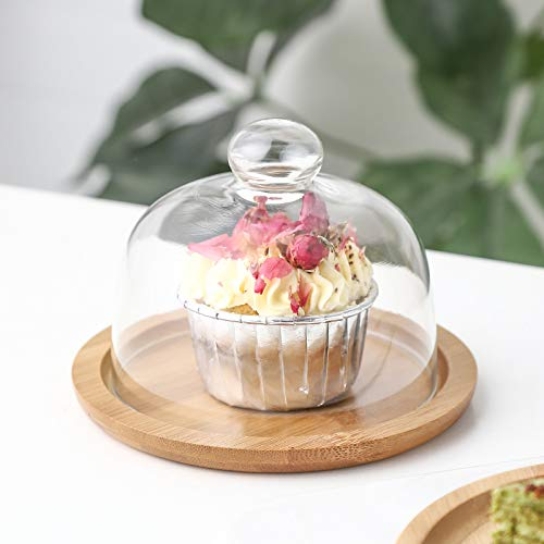 Soporte transparente para tartas con tapa de cúpula, bandeja para tartas, aperitivos, servidores de frutas, ensalada, cocina, fiesta, barbacoa, picnic, bandeja de 16 cm x 11,5 cm