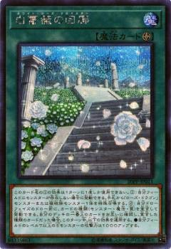 遊戯王 20PP-JP011 白薔薇の回廊 (日本語版 シークレットレア) プレミアムパック PREMIUM PACK 2020