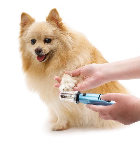 Oster Gentle Paws Less Stress Dog and Cat Nail Grinder, 2 Speed (078129-600-000)