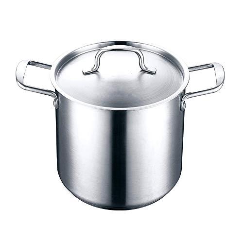 Marmite en acier inoxydable Pots De Légumes Asperges avec un couvercle Convient à tous les foyers, y compris à induction, lave-vaisselle, batterie de cuisine saine,Silver,22cm