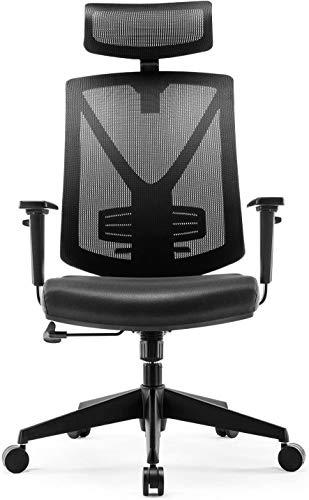 INTEY Bürostuhl Schreibtischstuhl ergonomischer Drehstuhl mit verstellbare Kopfstütze und Armlehnen, Höhenverstellung und Wippfunktion für Soho- oder Büroarbeit, Belastbar bis 150kg