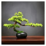 WENMENG2021 Decoración 13 Pulgadas de árboles bonsái, Plantas Falsas Árbol en Maceta de cerámica, Cedro Artificial Bonsai Decoración de árbol para el hogar Desk Office Baño Plantas Falsas
