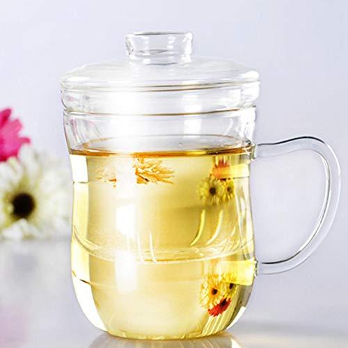 Emoshayoga Taza de Agua Resistente al Calor de la Taza de Cristal 400ML para el té perfumado para el Dormitorio