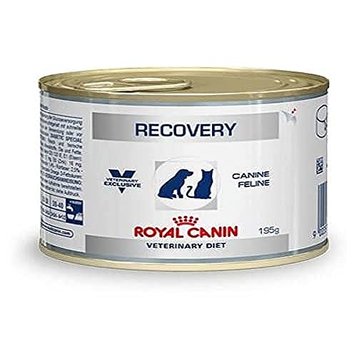 Royal Canin C-11402 Diet Recovery - 195 gr