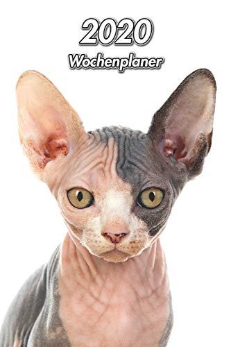 2020 Wochenplaner: Sphynx Katze | 107 Seiten, 15cm x 23cm ca. A5 | Taschenkalender | Terminplaner | Tagebuch | Terminkalender | Organizer für Katzenliebhaber