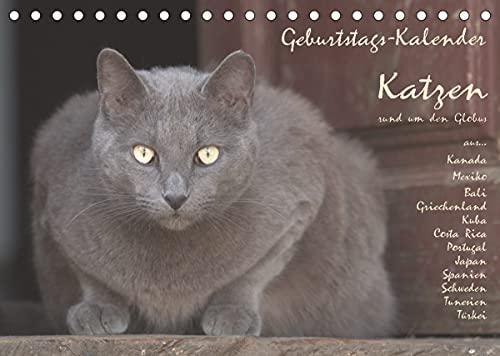 Geburtstags-Kalender Katzen. rund um den Globus (Tischkalender 2022 DIN A5 quer)
