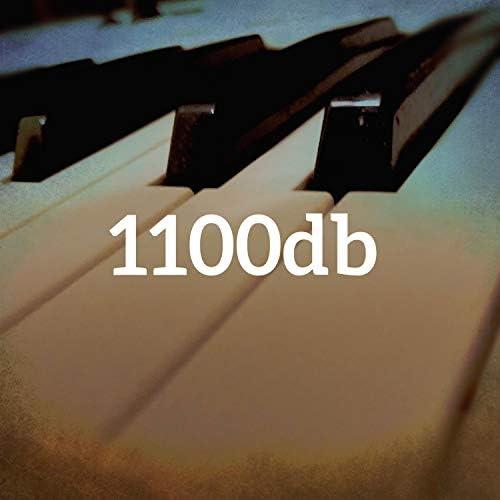 1100db