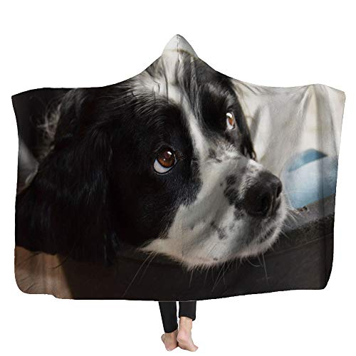 Fullentiart Hooded Fleece Blanket Black and White Springer Spaniel Dog Suitable for Sofas Beds Travel 60X80Inches Family Throw Blanket Throw Blanket for Kids Printed Throw Blanket